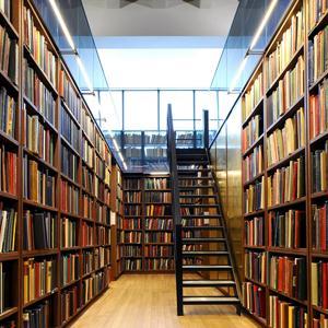Библиотеки Большого Луга